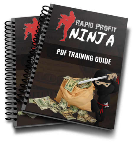 The Ebook - A Thorough Rapid Profit Ninja Review